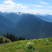 Hurricane Ridge #2