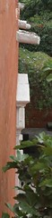 Parete (saltino) Tags: arequipa santacatalina per2006