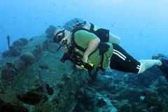 Scuba Diver 1611301355w (gparet) Tags: scubadiving scuba diving fish coral reef ocean sea water underwater photography diver swim sport caribbean bonaire buddy dive resort buddydive buddydiveresort marshscuba marshscubasupply photographer camera