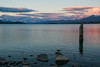Atardecer en Tekapo (Andrés Guerrero) Tags: atardecer canterbury lagotekapo newzealand nuevazelanda oceanía sunset tekapo tekapolake lago lake anochecer revelar laketekapo nz rocas rocks airelibre agua water tranquilidad serenidad