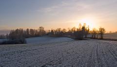 December light (Krogen) Tags: nature norway landscape norge natur norwegen olympus c7070 noruega scandinavia akershus romerike krogen landskap noorwegen noreg ullensaker skandinavia ljøgodt