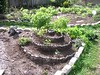 herb garden before