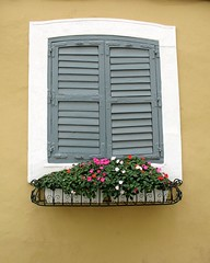 Shutters (francesbean) Tags: travel windows window shutters macau macao flowerbox plantbox
