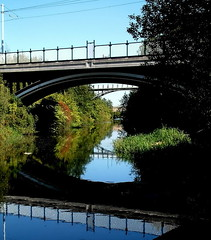 waterworld (Harry Halibut) Tags: road blue trees green water reeds near over bridges images wires electricity tramway overhead allrightsreserved staniforth sheffieldtinsleycanal sheffieldtechnologypark imagesofsheffield ©andrewpettigrew