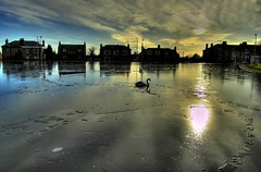 Slightly Surreal @Stobswell Pond Dundee (Magdalen Green Photography) Tags: blue reflection ice scotland swan bravo dundee albaluminis surreal scottish tayside hdr slightly ecosse stobswell abigfave stobswellpond iaingordon picturesofdundee dundeephotography magdalengreenphotography imagesofdundee dundeestockphotography printsofdundee