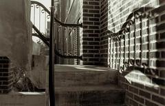 Jesse Hall Stairs, Concordia University