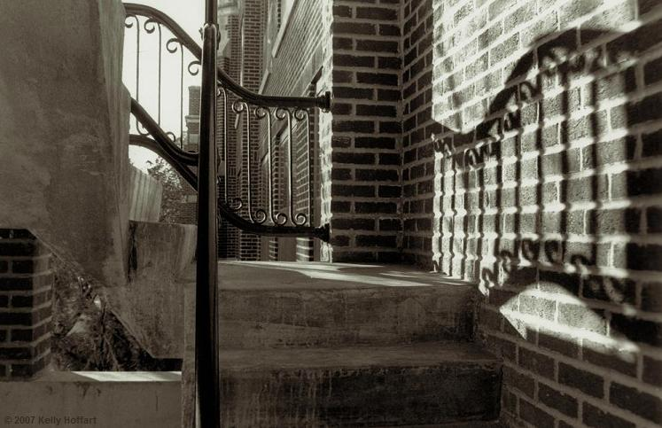 Jesse Hall Stairs, Concordia University