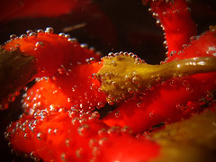 spicy bubbles (bitzi  ion-bogdan dumitrescu) Tags: red food hot macro green water kitchen vegetables fun pepper dof spice bubbles vegetable bubble peppers soda spicy veggies pickled paprika pickle bitzi ibdp findgetty ibdpro wwwibdpro ionbogdandumitrescuphotography