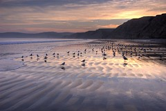 Drake's beach, Point Reyes at sunset (canbalci) Tags: ocean sunset seagulls beach nature pacific pointreyes drakesbeach hdr helluva photomatix sfchronicle96hrs p1f1