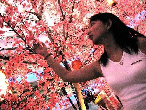 BlossomsCine2