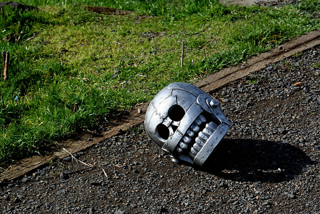 Skull, Fallen, Retouched
