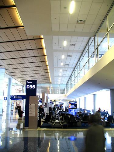D Terminal