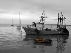 Freya @ Leigh On Sea (Thurrock Phil) Tags: uk sea cutout boat fuji phil finepix leigh essex freya thurrock s9600 thurrockphil