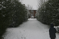 snow-4181 (liltza) Tags: ayres