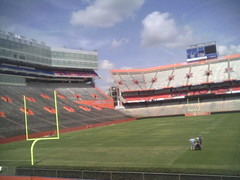 My View of the Stadium
