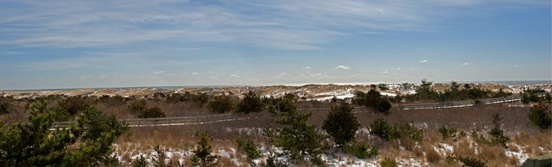 Panoramic Fire Island
