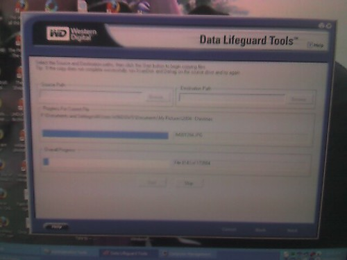 Trying to salvage the data from the old HD again