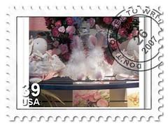 fuzzy postage