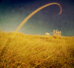 mar de ajo (colerise) Tags: blue light sky brown abstract art texture nature field grass cat square landscape wheat horizon hill dramatic canvas land marble cloudless curve blades tails dreamcatcher artlibre goldenphotographer magicdonkeysbest