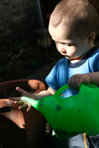 Watering Can 7