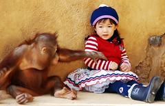 Everland orangutan & cute girl (floridapfe) Tags: park children korea orangutan theme everland scimmia aplusphoto