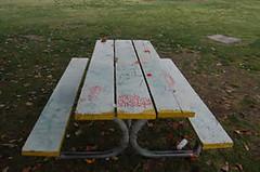 Cabrillo Park 2