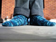 Snakes on a sock!