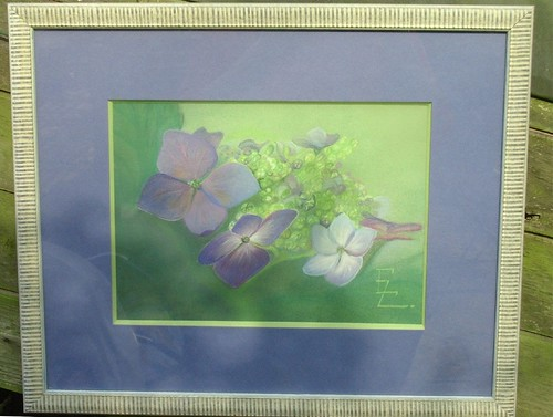 Hydrangea finally framed
