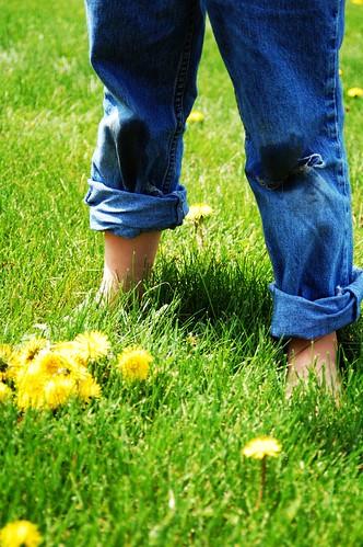 barefoot memories