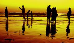 family picnic (!!sahrizvi!!) Tags: ocean pakistan sunset sea sun sunlight beach water beautiful silhouette asia dusk shore karachi seawater rizvi blueribbonwinner sahrizvi sarizvi saarc mywinners superaplus aplusphoto goldenphotographer wowiekazowie