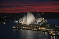 Opera House, Dawn