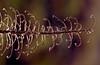 Wind Scratcher (FotoGrazio) Tags: artofnature dry composition decay nature fotograzio photographicart fall dead worldphotographer plant mothernature macro curly waynegrazio photography backlighting horizontal fineart autumn pattern art phototoart adobelightroom dried selectivefocus internationalphotographer photographicartist adobephotoshop botany californiaphotographer texture sandiegophotographer flickr 500px topazadjust closeup beautiful topazclarity artofphotography digitalphotography wavy waynesgrazio weed branches botanical branch