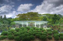 The Glass House #1 (DanielKHC) Tags: garden botanical singapore sony botanic symetry alpha glasshouse hdr a100 photomatix bonzaigarden tonemapped sigma18200mm 10faves skyarchitecture danielcheong hdrenfrancais danielkhc