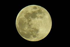Full Moon, February First ~2007 (john35o) Tags: moon oregon portland fullmoon pdx nikoncoolpix8800 nikonstunninggallery