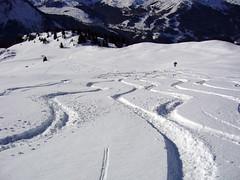Off Piste (urish) Tags: mountain snow ski trail laplagne offpiste