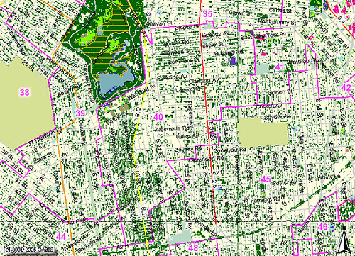 Brooklyn City Council District 40: Classified Landcover