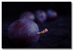 Plums anyone? (borealnz) Tags: fruit bravo purple quality plum getty plums layered magicdonkey theworldthroughmyeyes abigfave artlibre anawesomeshot impressedbeauty magicdonkey25 bratanesque juniorwomble utata:project=upfaves pprowinner bppslideshow borealnz