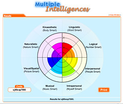 multiple intelligences test results