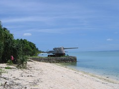 Japanese Guns (lotto94024) Tags: wwii 2007 tarawa betio