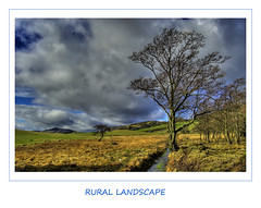 Rural Landscape (Magdalen Green Photography) Tags: blue tree green clouds landscape scotland stream dundee scottish abigfave impressedbeauty