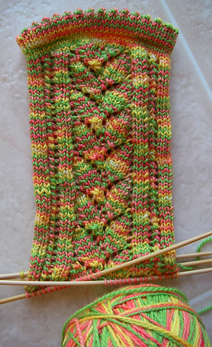 Bird of Paradise Petals Collection Sock in Progress