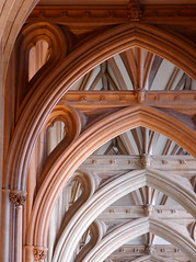 Aligned, Bristol Cathedral (archidave) Tags: uk roof england detail heritage church abbey architecture bristol design carved ancient arch cathedral mason gothic style carving medieval vault decorated corbel augustinian williamjoy