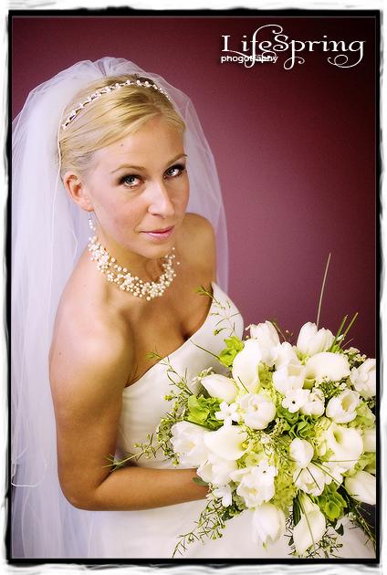 Michigan City bridal portrait