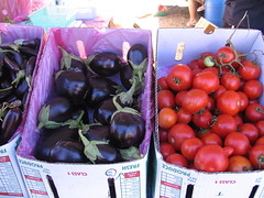 eggplant & tomatoes