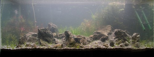 Final Aquascape