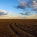Two Track Prairie Vista - by Fort Photo