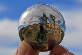 Ballbearing shot - Joshua Tree, CA