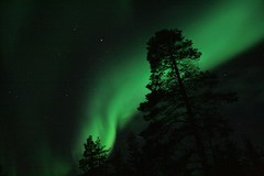 Aurora borealis (Fredww) Tags: night finland aurora lapland saariselk northernlights kiilop