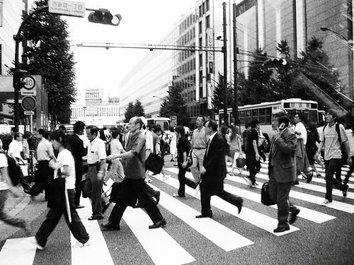 横断歩道│交通│無料写真素材