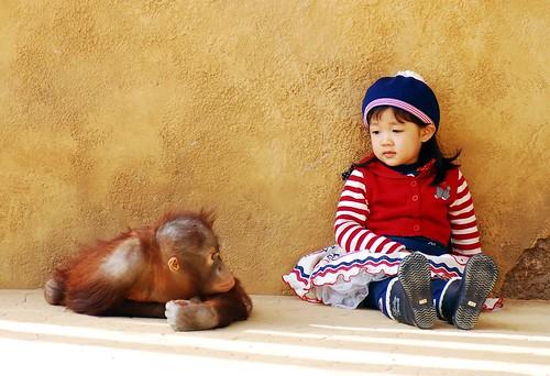 Everland orangutan & cute girl by floridapfe.